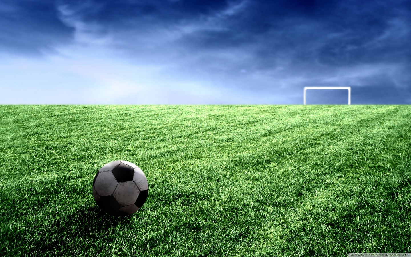 soccer_field-wallpaper-1440x9003